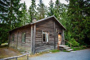Kleine Holzhütte zwischen Nadelbäumen